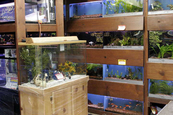 We Stock Aquarium Stands, Cabinets And Canopies Constructed From Premium  Materials Including Pine, Oak And Other Custom Hardwoods. Custom Aquarium  Furniture ...